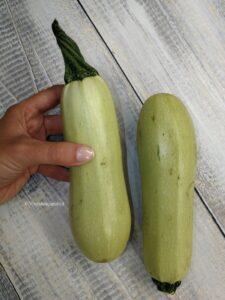 zucchine bianche di sicilia